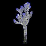 Leafless Birch (Geert, Nessich & Thom)