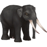Asian Straight-tusked Elephant (Colonel Swampert & Mjmannella)