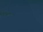 Aquarium Fog (Whalebite)