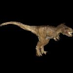 Albertosaurus (16529950)