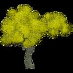 Palo Verde Tree (Mika & Penguinman)
