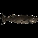 Cookiecutter Shark (7SeasDesigns)