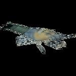 Ambient Cave Shrimp (Whalebite)