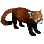 Red Panda (Aurora Designs)