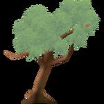 Polylepis Tree (Worldwide Designers United)