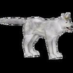 Arctic Wolf (Zoo Admin Design Team)