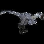 Achillesaurus (Austroraptor)