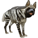 Striped Hyena (Aurora Designs)