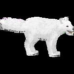 Arctic Fox (Lgcfm & Whalebite)