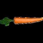 Carrot (Zoker)