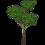 Jackalberry (Kangorilaphant)