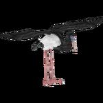 Abdim's Stork (LilyValley)