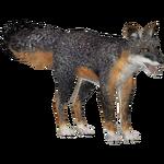 Cozumel Fox (Tamara Henson)