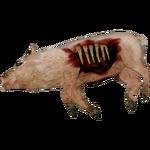 Pig Carcass (Tyranachu)