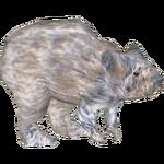 American Pika (Kingcobrasaurus)