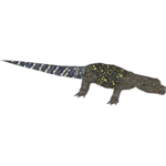 Crocodile Monitor (SpinoSquad)