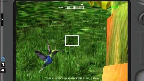 Colibri Animated Sculpture Ingame