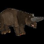 Arsinoitherium (Bill)