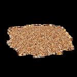Seeds (ZTABC Team)