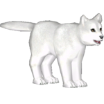 Arctic Fox (Dwarfgouramis & Penguinman)