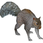 Eastern Gray Squirrel (Ulquiorra)
