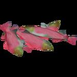 Salmon Food (Colonel Swampert)