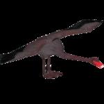 Black Swan (Kangorilaphant)