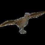 Corn Crake (Kingcobrasaurus)