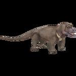 Anteosaurus (Acinonyx Jubatus)