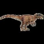 Allosaurus (Ultamateterex2)