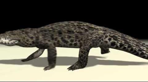 Crocodylia (HENDRIX & Zerosvalmont)