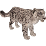 Snow Leopard (Aurora Designs)