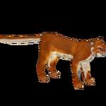 Bay Cat (Tamara Henson)