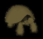 Apatosaurus (BRR)