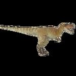 Albertosaurus (Philly)