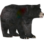 American Black Bear (Kingcobrasaurus)
