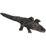 American Alligator (Hispa Designs)