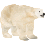 Polar Bear (The Restorers)