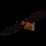 Ambient Rodrigues Flying Fox (Dacentru)