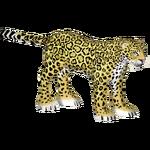 Arizona Jaguar (DenoMon)