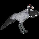 Common Crane (Crookedjaw & Yur)