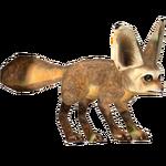 Bat-Eared Fox (Tamara Henson)