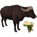 African Buffalo (DutchDesigns)