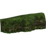 Big Rainforest Rock (slice)