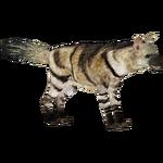 Aardwolf (ZTABC Team)
