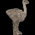 Darwin's Rhea (VGnome)