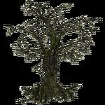 Creepy Tree (Feral Designs)