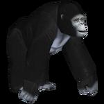 Bigfoot (Yohanes)