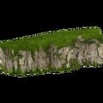 Big Temperate Rock (slice)