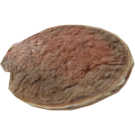 Antarctic Scallop (Whalebite)
